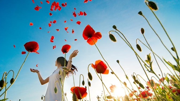 Fearlessly Living - red poppies